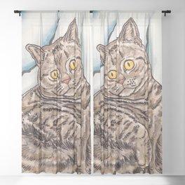 Grey Cat Sheer Curtain