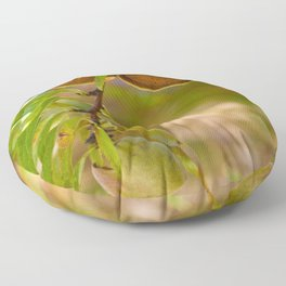 Almond Harvest - Ripe Almonds On A Tree Branch Floor Pillow