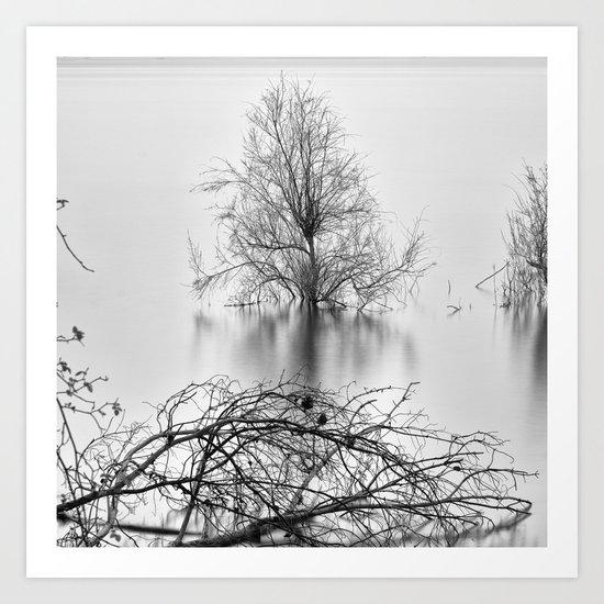 """Peace Tree"". Sunrise at the lake Art Print"