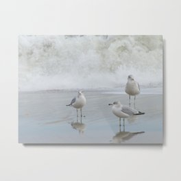Hanging out at the Shore Metal Print