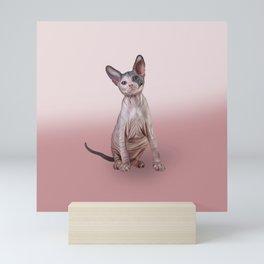 Drawing Sphynx kitten, hairless Mini Art Print