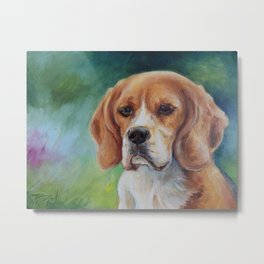 BEAGLE Dog portrait Metal Print