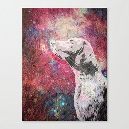 Canes Venatici Canvas Print