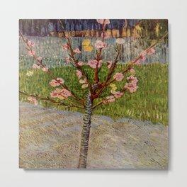 Vincent Van Gogh's Almond Tree in Blossom Metal Print
