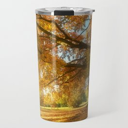 Copper Beech in Autumn Glow Travel Mug