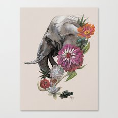 Elephant : Memory of Elephants Canvas Print