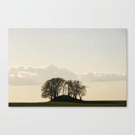 Scadinavian evening light in the nature Canvas Print