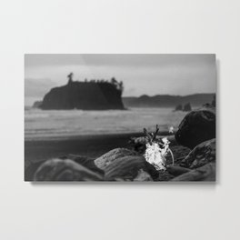 beach fire Metal Print