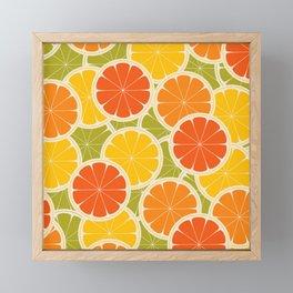 Orange, lemon and grapefruit Framed Mini Art Print