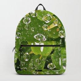 Spider Silk. Backpack