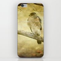 hunter iPhone & iPod Skins featuring Hunter by Curt Saunier