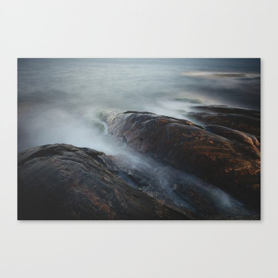 Creatures of the sea Canvas Print