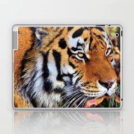Predator   Predateur Laptop & iPad Skin
