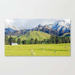Sheep Station Canvas Print
