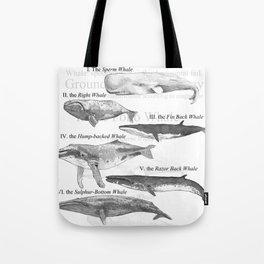 I. The Folio Whale Tote Bag