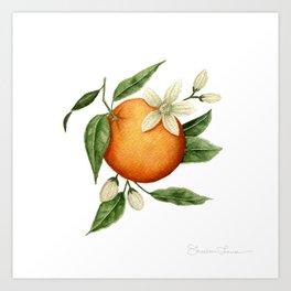 Blooming Citrus Watercolor Art Print