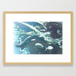 defected Framed Art Print