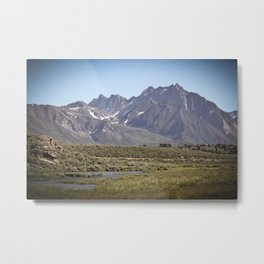 Colossal Nature Metal Print