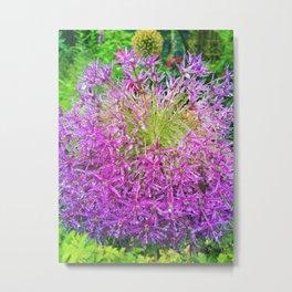 Dewey Allium Metal Print