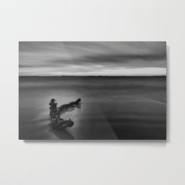 In Stillness II Metal Print