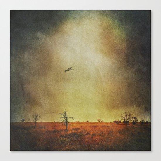 stormland hunter Canvas Print