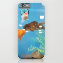 Goldfish in Turquoise Water iPhone Case