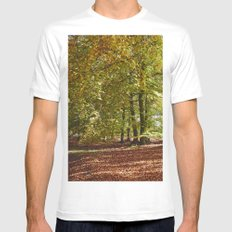 Autumnal beech trees in a natural woodland. Norfolk, UK. White MEDIUM Mens Fitted Tee