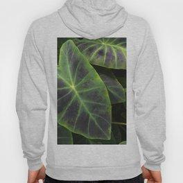 Big Leaf Garden Hoody