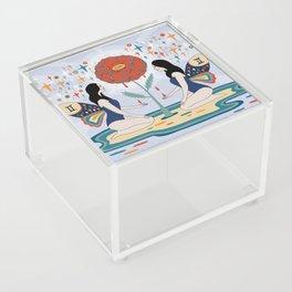 Gemini Acrylic Box