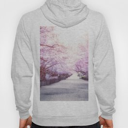 Central Park Cherry Blossom Path - New York City Hoody