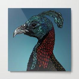 Exotic Birds - Himalayan Monal Metal Print