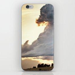Shadow of Uncertainty iPhone Skin
