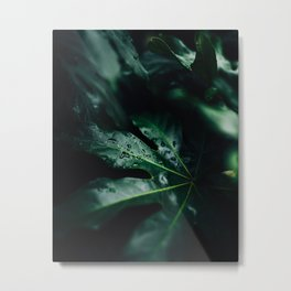 Leaves by Robert Nelson Metal Print