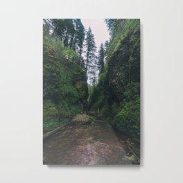 Oneonta Gorge Metal Print