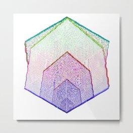 Colorized Metal Print