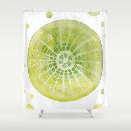 Microscopic - Diatoms - Green Palette Shower Curtain