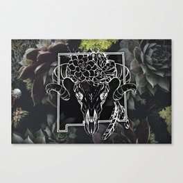 Skull and Succulants Canvas Print