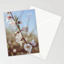 Romantic Peach Blossom white, pink, green, nature, love Stationery Cards