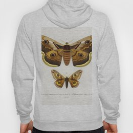 Emporor moths illustrated by Charles Dessalines D Orbigny (1806-1876) Hoody