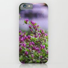 Summer's Spell Slim Case iPhone 6s