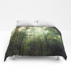 Penetration Comforters