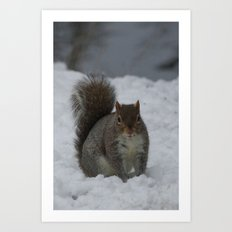 Squirrel in the snow  Art Print