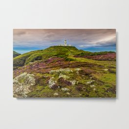 Strumble Head Metal Print