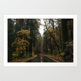 Fall Road Trip Through A Forest Art Print