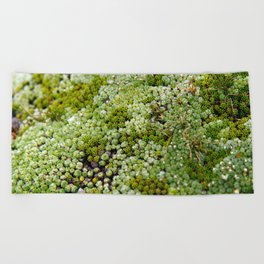 wonderful moss Beach Towel