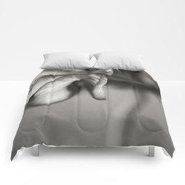 Geranium 1 Comforters