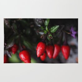 Red Hot Garden Salsa Chili Peppers. Rug