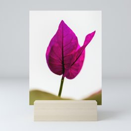 flower photography by Jason Leung Mini Art Print