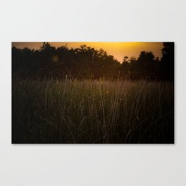 Sunset in the Fields Canvas Print