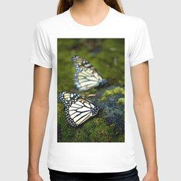 Monarch Butterfies T-shirt
